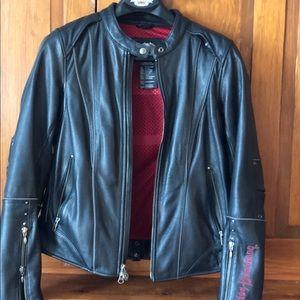 Harley Davidson jacket, chaps, helmet, Gloves